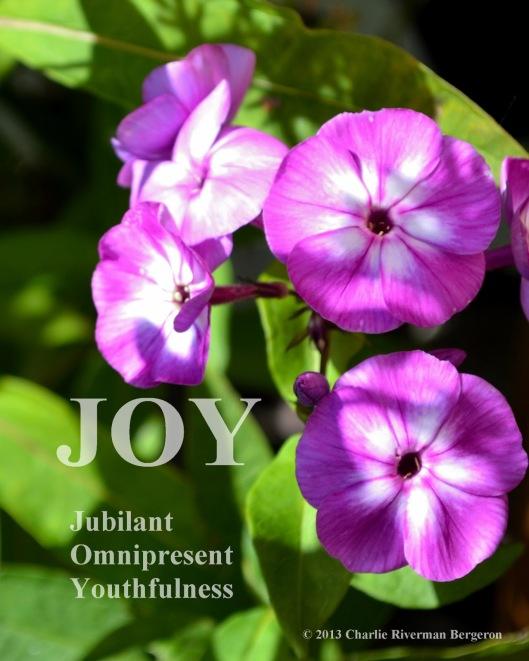 28a89-joy