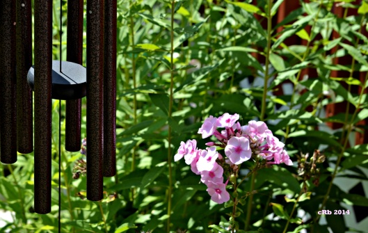 Phlox and Windchime