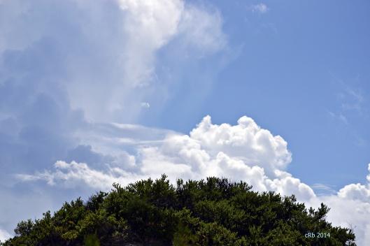 Bermuda Sky
