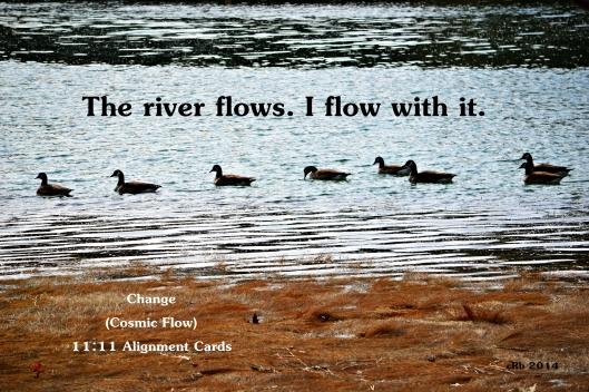Cosmic Flow Day 3