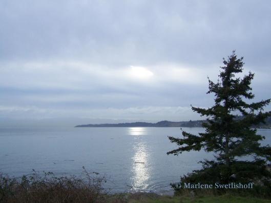 Vancouver Island - Marlene Swetlishoff