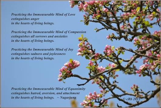 Nagarjuna Quote