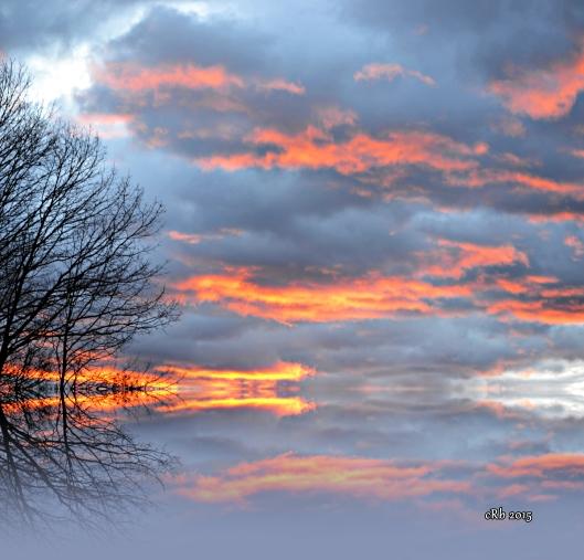 Dragon Sky reflection