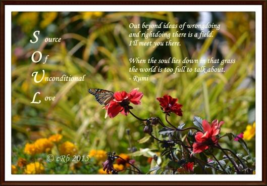Soul - Rumi quote