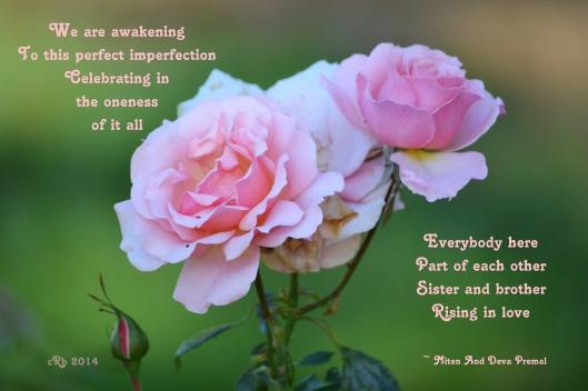 2014_10_13_awakening