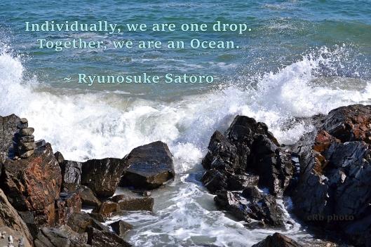 drop-to-ocean