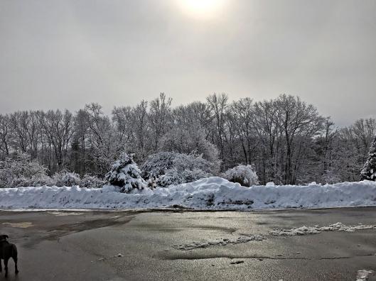 2017-02-16-13-23-25