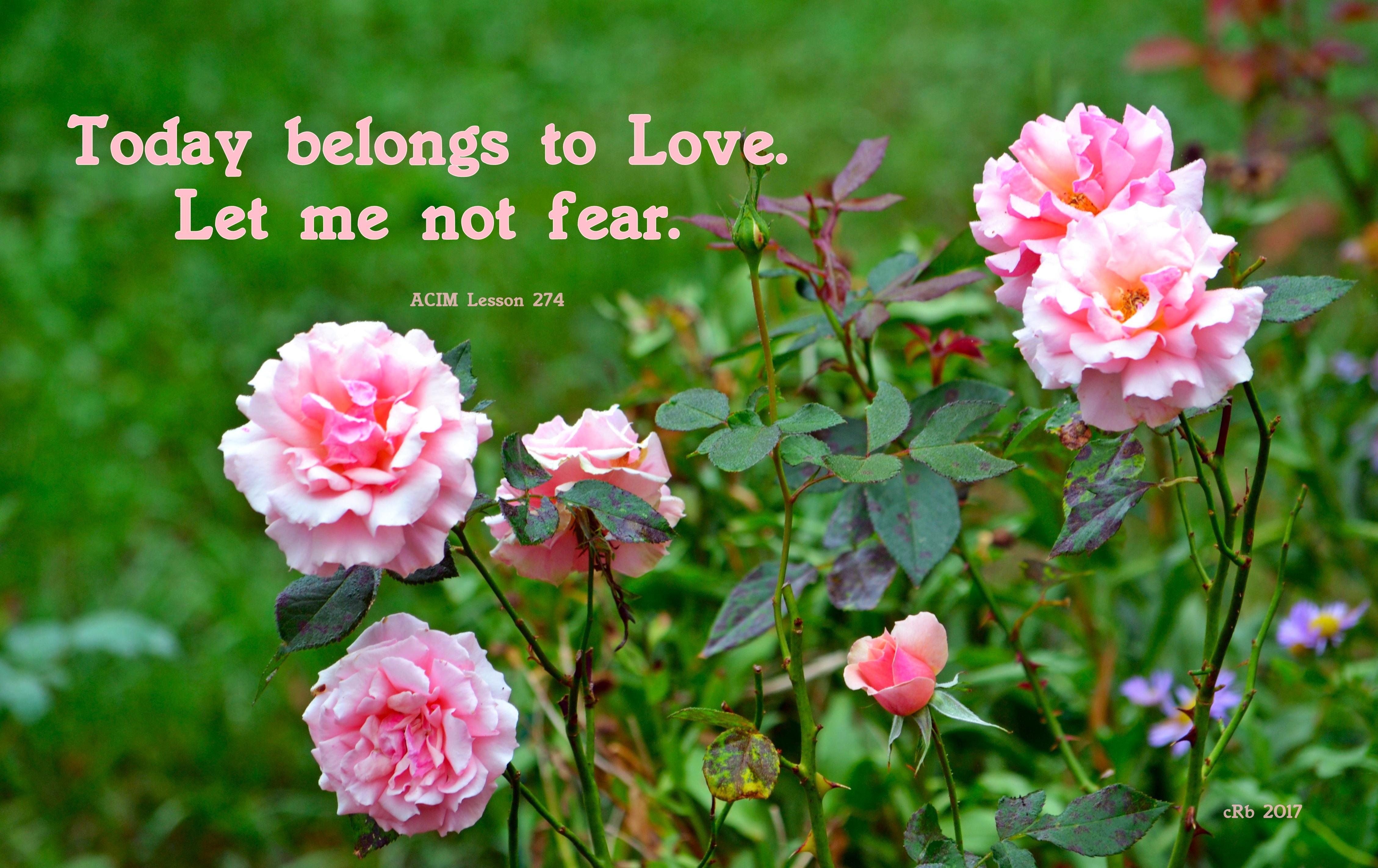 today-belongs-to-love