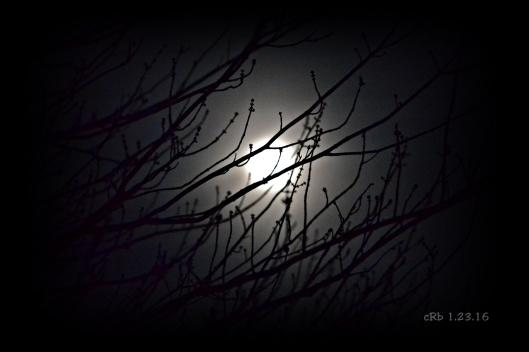 1.22.16 Rising Moon