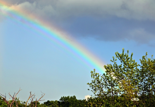 2015_07_01_rainbow_cRb