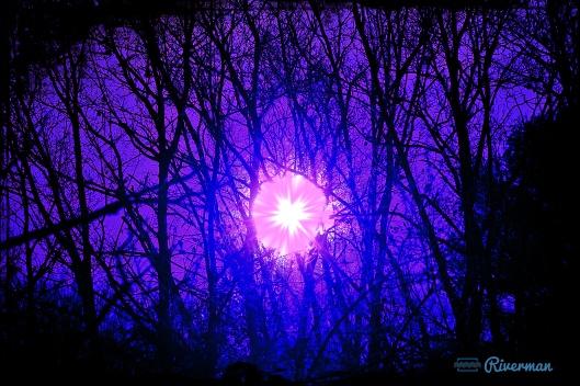 Divine Violet Rays