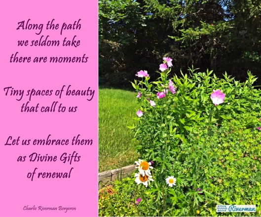 Gifts of Renewal