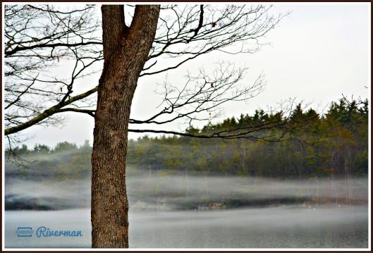 Chases Pond Mist.JPG