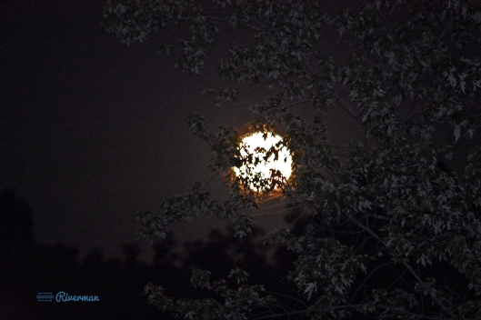 Full Moon Rising 7.16.19.JPG